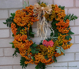 Wreath with Mountain Ash Berries