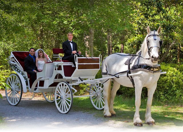 Howza wedding