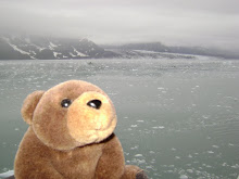 Teddy Bear in Alaska
