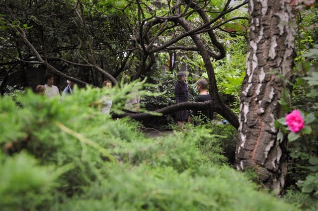 Evry Daily Photo - Le Jardin Interieur - Cour de Taichi Chuan