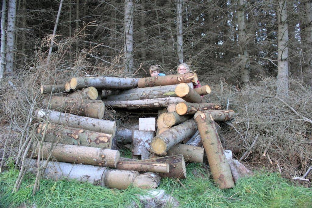 Thetamshee log pile house House piles