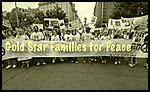 Gold Star Families for Peace