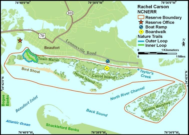 Rachel Carson Reserve