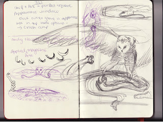 sketchbook, owl and snake