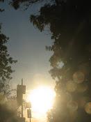 Sunny Orbs