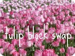 TOTALLY TULIP BLOCK SWAP