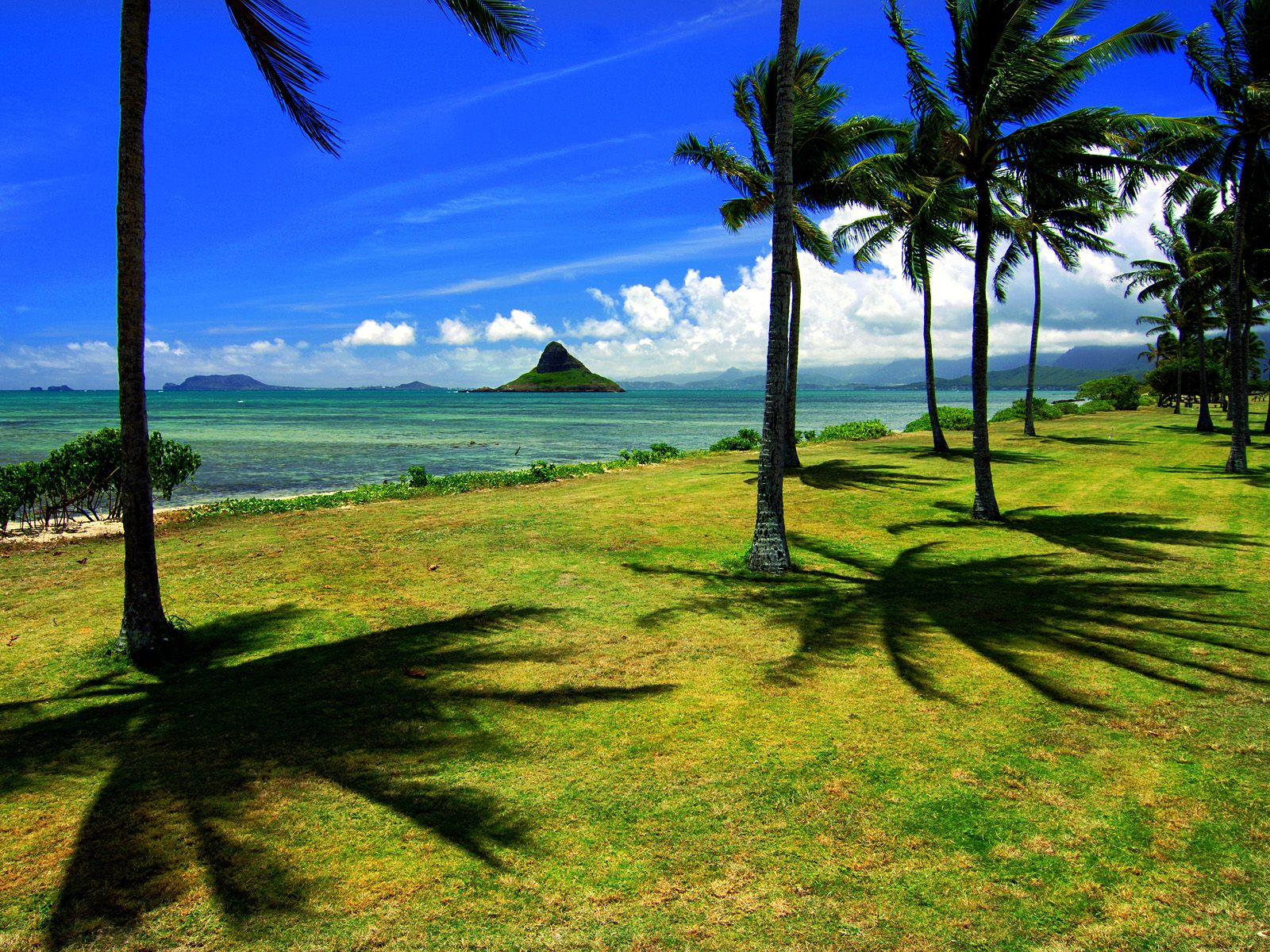 http://2.bp.blogspot.com/_6Ks7mquN8BQ/TMQJXb7CdiI/AAAAAAAAARk/GwkP6hGvhCM/s1600/Oahu,%2BHawaii.jpg