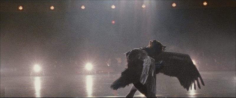 Black Swan Wings Movie. Film Review: Black Swan