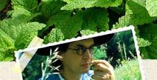 L'herbier gourmand de Marc Veyrat