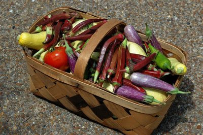 another basket filled with fresh garden veggies