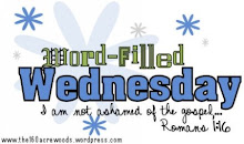 Word-Filled Wednesday