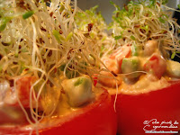 tomate graine germee avocat crevette grise entree froide