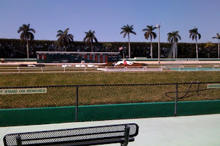 Palm Beach Kennel Club, race track