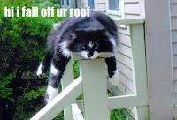 Hi I fall off ur roof