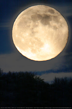 Beaver's Full Moon Rising-November 21, 2010