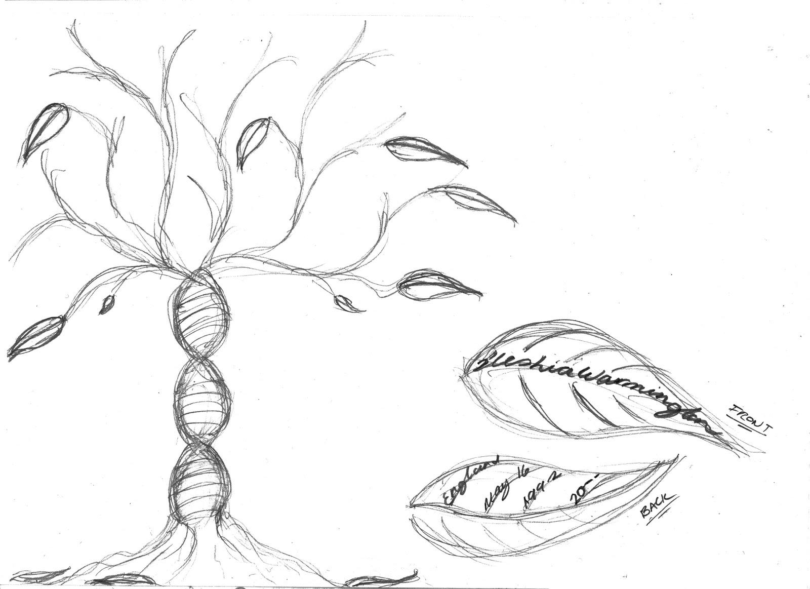 Dna tree idea