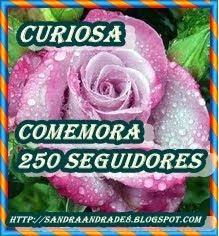 OFERTA  DA  AMIGA  SANDRA  DO  BLOG  CURIOSA...!
