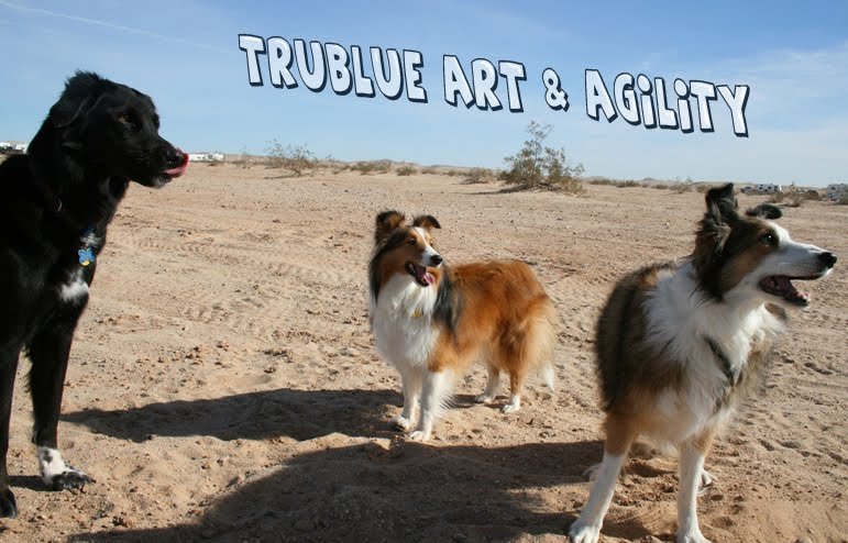 TruBlue Art and Agility