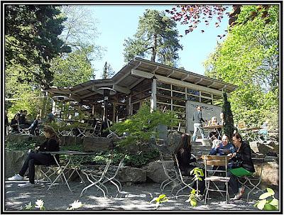 Fikatipset: Zetas trädgårdscafé