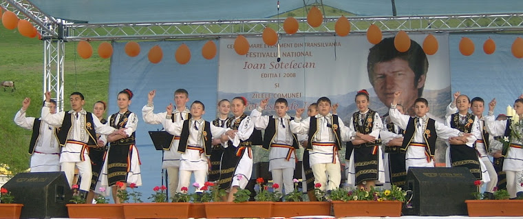 """Festivalul National Ioan Sotelecan 2008"""