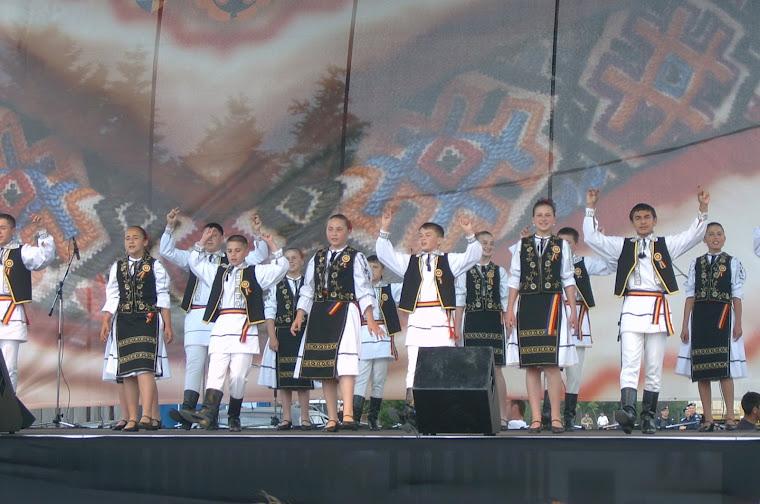 """""""Serbarile Transilvane""""2008"""