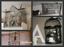 Älskar fågelburar