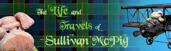 The Life and Travels of Sullivan McPig