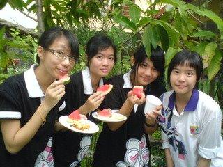 Tao_Geix 312 & ling