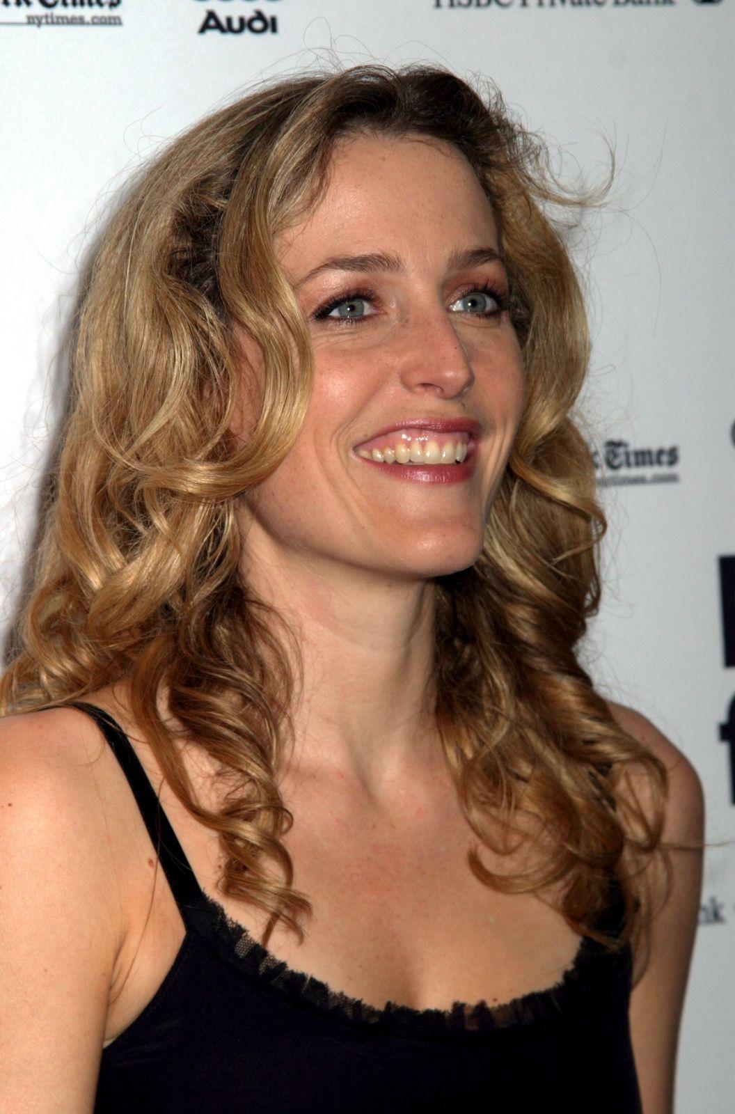 http://2.bp.blogspot.com/_6Ty_WF53R7E/TOmPcJG02ZI/AAAAAAAAC1Q/qWyuhY5lDS0/s1600/actress-gillian-anderson-762692.jpg