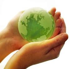 Desarrollo Eco-Sostenible