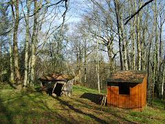 Les cabanes en forêt