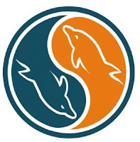 Artigos: AJAX, PHP, MYSQL, SQLSERVER, VB.NET, DELPHI, COMPACT FRAMEWORK, FIREBIRD