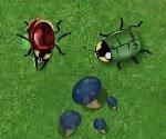 beetle war, free, flash, games, jogos, online