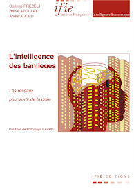 L&#39;INTELLIGENCE DES BANLIEUES