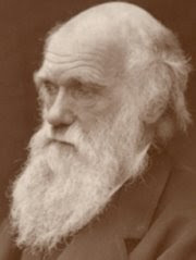 El Árbol de la Vida: 150 años de la Teoría de la Evolución de Charles Darwin