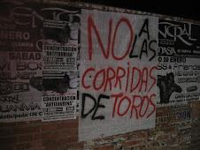 Carteles por Cartagena (Enero 2011)