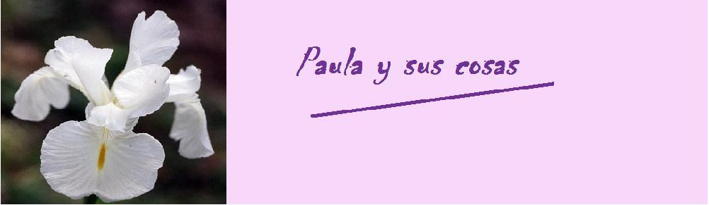 Paula y sus cosas