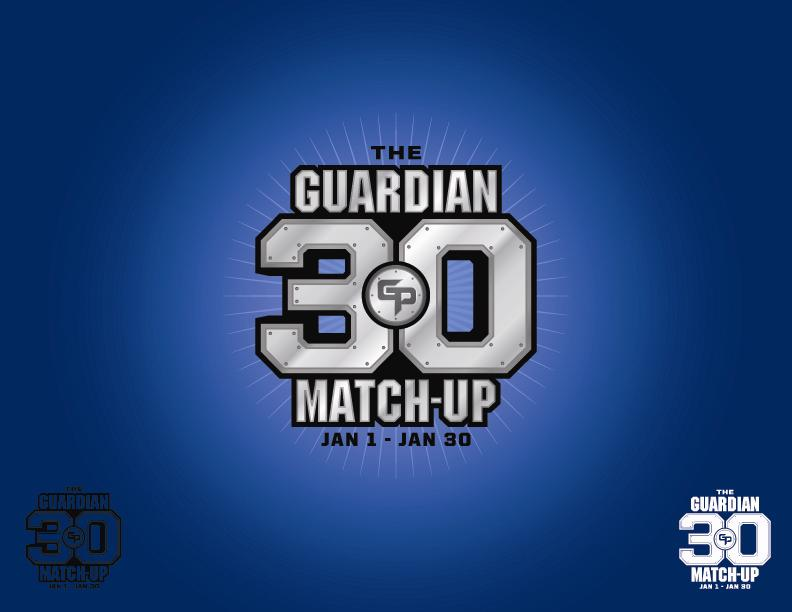 What is the Guardian Project? 30 NHL themed superheroes.