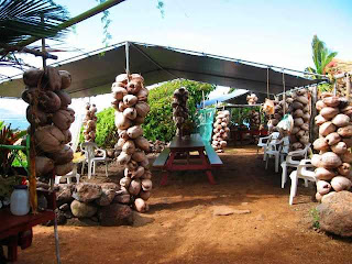 Coconut Shack as a classroom