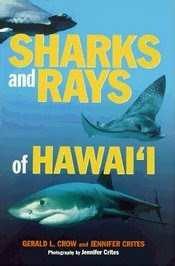 Book Cover 'Sharks and Rays of Hawaii'