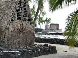 Individual thatch roofed huts