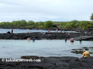Snorkeling Honaunau Bay after visit to City of Refuge