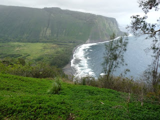 Looking into Waipio Valley from Lookout