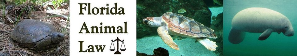 Florida Animal Law