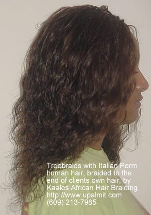 ... , All: TREEBRAIDS BY KAALE: clean, safe, location by African Princess