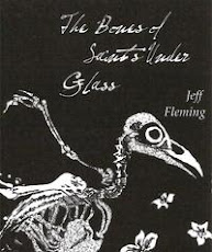 The Bones of Saints Under Glass