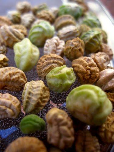[Seeds]