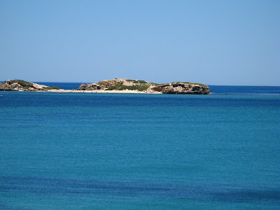 Island View Seals