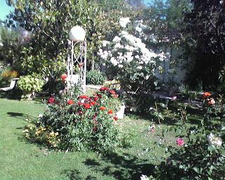 Imagen de bello jardín