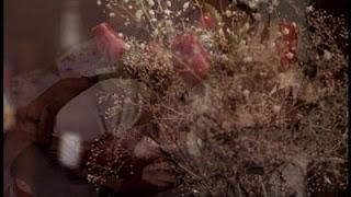 Kırmızı güllerden Layla ve Billy'e